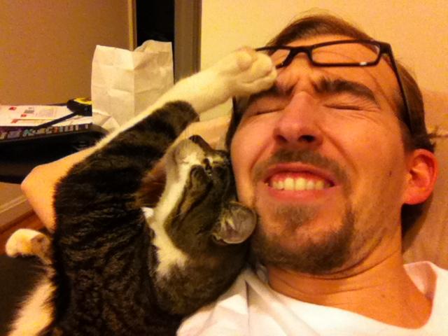 Bertie hating my glasses